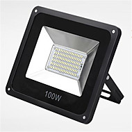 HRY® 100W 6000K IP66 LED SMD Super Slim Waterproof Garden Flood Light LED Spotlighting (220V)
