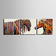 Canvas Set Dyr Europæisk Stil,Tre Paneler Canvas Firkantet Print Art Wall Decor For Hjem Dekoration