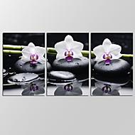 vászon Set Absztrakt tájkép Modern,Három elem Vászon Vízszintes Print Art fali dekoráció For lakberendezési