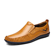 Men's Flats Spring / Fall Comfort Cowhide / Nappa Leather Outdoor Flat Heel Others Black / Blue / Brown / Yellow Others