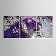 Animal / Fantasia Impressão em tela 3 Painéis Pronto para pendurar , Vertical