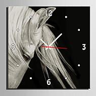 Obdélníkový Módní a moderní Nástěnné hodiny , Zvířata Plátno40 x 40cm(16inchx16inch)x1pcs/ 50 x 50cm(20inchx20inch)x1pcs/ 60 x