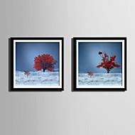 Paisagem / Floral/Botânico Quadros Emoldurados / Conjunto Emoldurado Wall Art,PVC Preto Cartolina de Passepartout Incluída com frameWall