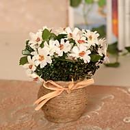 1 1 ענף פלסטיק / Others חינניות / Others פרחים לשולחן פרחים מלאכותיים
