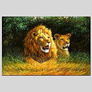 Ručně malované Abstraktní Zvíře Olejomalby + tisky,Moderní Klasický Jeden panel Plátno Hang-malované olejomalba For Home dekorace