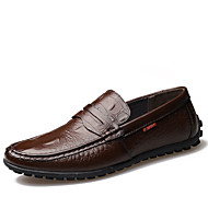 Men's Loafers & Slip-Ons Spring Summer Fall Winter Comfort Moccasin Leather Outdoor Office & Career Casual Party & Evening Flat Heel