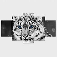 Stampe a tela Animali Classico,Cinque Pannelli Tela Qualsiasi forma Stampa artistica Decorazioni da parete For Decorazioni per la casa
