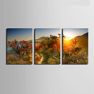 E-HOME® Mountain Sunset Scenery Clock in Canvas 3pcs