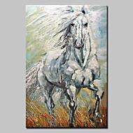 Kézzel festett Absztrakt Állat Festmények,Modern Realizmus Egy elem Vászon Hang festett olajfestmény For lakberendezési