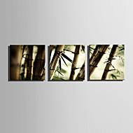 Landschap Modern,Drie panelen Canvas Vierkant Print Art Muurdecoratie For Huisdecoratie