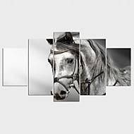 Reprodukce maleb na plátně Zvíře Styl Moderní,Pět panelů Plátno Jakýkoliv Shape Tisk Art Wall Decor For Home dekorace