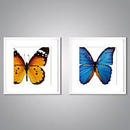 Impresiones  Enmarcadas En Lienzo Naturaleza muerta Animal Modern Realismo,Dos Paneles Lienzos Cuadrado lámina Decoración de pared For