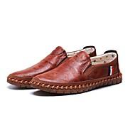 Для мужчин Мокасины и Свитер Удобная обувь Ткань Весна Осень Повседневные Для прогулок Удобная обувь На плоской подошве Черный Коричневый
