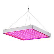 100W LED Büyüyen Işıklar 1365 SMD 3528 5292-6300 lm Kırmızı Mavi Su Geçirmez V 1 parça