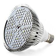50W E27 LED Büyüyen Işıklar 120 SMD 5730 4000-5000 lm Sıcak Beyaz Kırmızı Mavi UV (Siyah Işık) V 1 parça