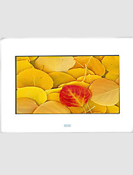 7 inch CSTN Digital Picture Frame With Multi-function card reader and MP3 and Video Player(SMQ2028)