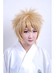 perruque cosplay inspiré par inu x boku secret service-Watanuki Banri