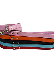 Leashes Couro cão colorido (cores sortidas, S-M)