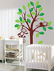 Camera bambini Monkey Tree Wall Stickers