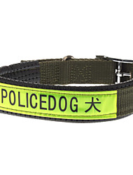 Noctilucent collier de chien Policedog utilisation avec mousse