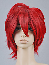 Cosplay Wig Inspired by Vocaloid Akaito