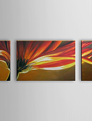 Hand Painted Oil Painting Floral Blossom Flower Set of 3 with Stretched Frame 1307-FL0181