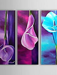 Hand Painted Oil Painting Floral Colorful Lily with Stretched Frame Set of 3 1308-FL0764