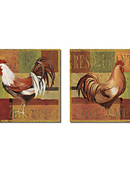 Stretched Canvas Art Animal Gourmet Rooster by NBL Studio Set of 2