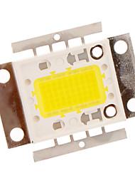 50W 3000LM weiße LED Wohnung Lamp Light (18-20V)