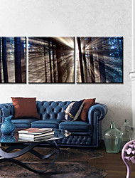 Stretched Canvas Art Landscape Soft Light Set of 3