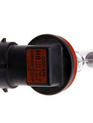 H7-55NHP/BP2 super ampoules de phare lumineux, paquet de 2