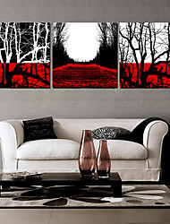 Stretched Canvas Art Landscape Path with Deadwoods Set of 3