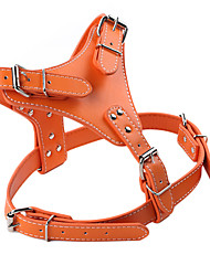 Adjustable Fashionable Leather Safety Harness for Pets Dogs