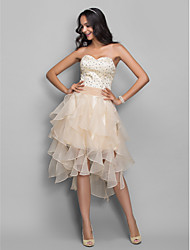 TS Couture® Cocktail Party / Holiday /  Dress - Champagne Plus Sizes / Petite A-line / Princess Sweetheart AsymmetricalOrganza / Stretch