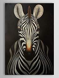 Hand Painted Oil Painting Animal Zebra with Stretched Frame 1311-AN1147