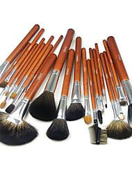 Pro haute qualité 22 PC Naturel Mink cheveux pinceau de maquillage avec étui (2 couleur)
