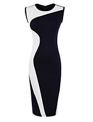 Women's Sleeveless Bodycon Dress