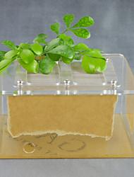 Лента коробка с крышкой из нержавеющей стали с двойным доказательства для муравьев