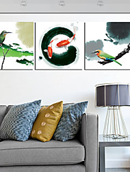 Stretched Canvas Print Art Animal Bird and Fish Set of 3