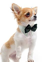 Dog Tie/Bow Tie Orange / Green / White Dog Clothes Winter / Summer / Spring/Fall Wedding