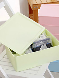Simplicity Solid Underwear Storage Box