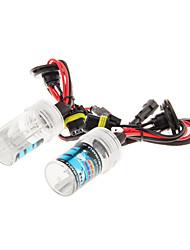 H1 3000K Xenon ampoule de lampe