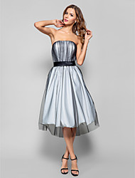 Cocktail Party / Holiday / Homecoming Dress - Silver Plus Sizes / Petite A-line Strapless Knee-length Tulle