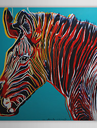 Stretched Canvas Art Pop Art Animal Grevy's Zebra Ready to Hang