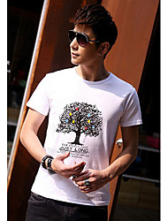 Big Tree Blanc T-shirt D & M Homme