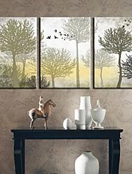 Reproducción en lienzo de arte botánico The Silent Trees Set de 3