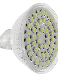GU5.3(MR16) 4W 60 240 LM Cool White LED Spotlight DC 12 V