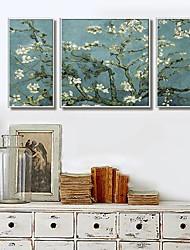 Apricot Blossom Framed Canvas Juego de 3