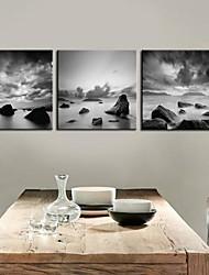 Натяжные холсте Пейзаж черный и белый взгляд Набор 3