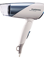 Hot Powerful Negative Ion Hot and Cold Air Flyco Hair Dryer
